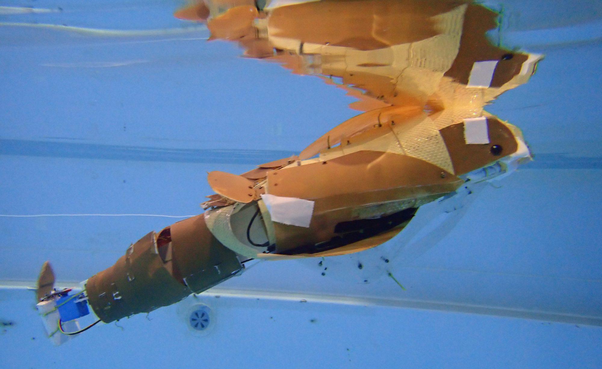 水中ロボットコンベンション in JAMSTEC 2020 ~海と日本プロジェクト~